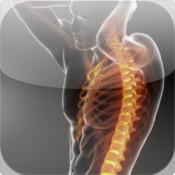 Heuser Chiropractic